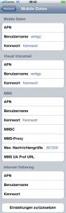 iPhone 3GS: Einstellungen für Mobiles Internet