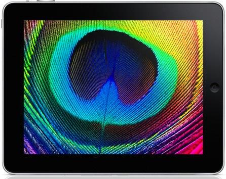 Welche Display-Auflösung bekommt das iPad 2