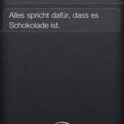 Siri, was ist der Sinn des Lebens?