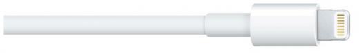 Apple Lightning-Kabel: Drittanbieter durch Update ausschließen?